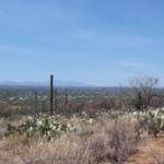 10632 N Gibbon Canyon Place