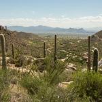 4425 W. Cush Canyon Loop